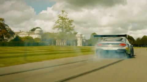 Centenary Concours de Bentley